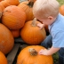 kid pumpkin patch