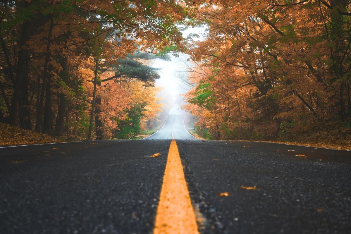 empty_road_autumn